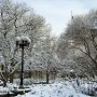 Beautiful snow-edged morning in Union Square, New York !!!